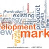 new-market-development-45433336